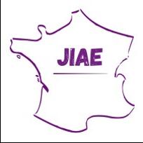 Logo JIAE - IAE Bordeaux Consulting